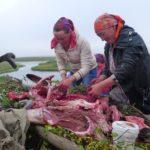 Чумработницы готовятся ко Дню оленя